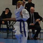 championnat départemental kata - novembre 2018